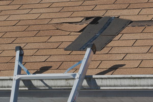 DAMAGED ROOFS